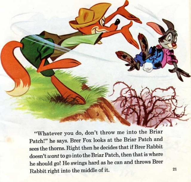 brer-rabbit-in-briar-patch