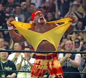 Image result for hulk hogan's the referee