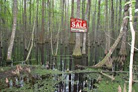 Buying land in central FL - Bogleheads.org